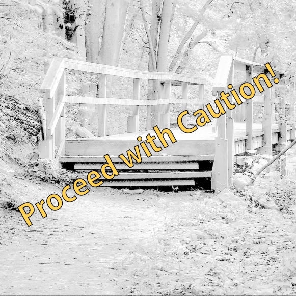 Ravien_footbridge_David_A_Balfour_Park